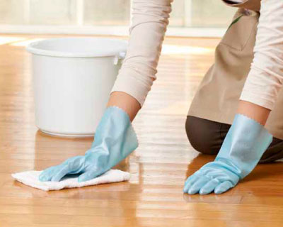 Ideal for cleaning hard-wood floors.