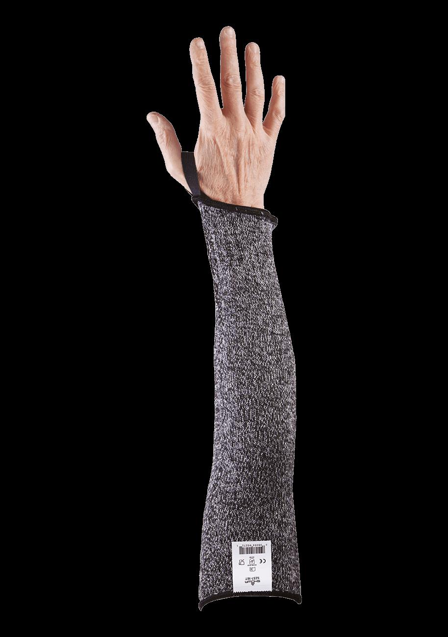 s237-16t-palm 2